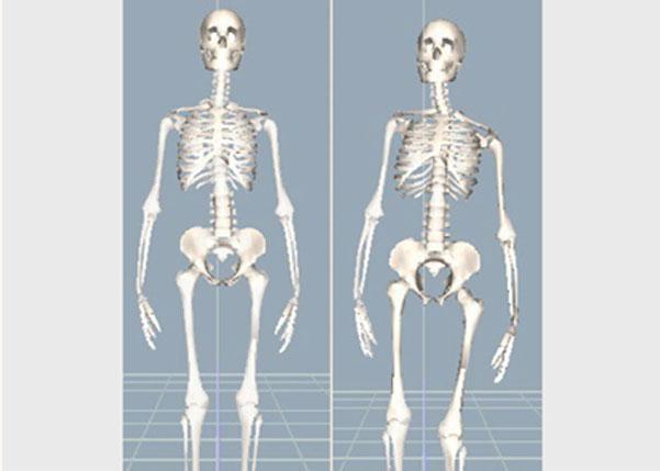 3D姿勢分析のイメージ画像