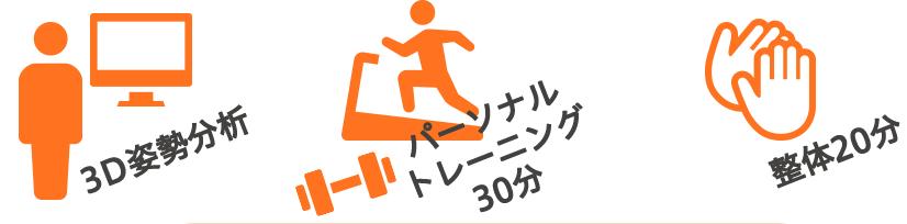3D姿勢分析、パーソナルトレーニング(30分)、整体(20分)