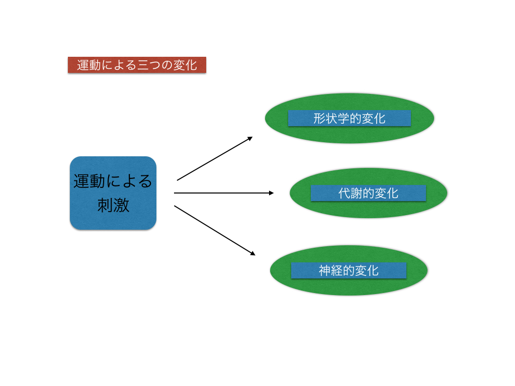 ブログ資料.001